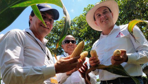 Proyecto de soberanía alimentaria en Risaralda